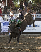 2015 Rancho Mission Viejo Rodeo