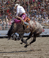 2013 Rancho Mission Viejo Rodeo